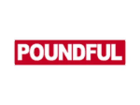 "Фирма ""Poundful Electronics Co., Ltd."", Тайвань"