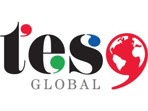 """Фирма """"TES"""", Тайвань"""