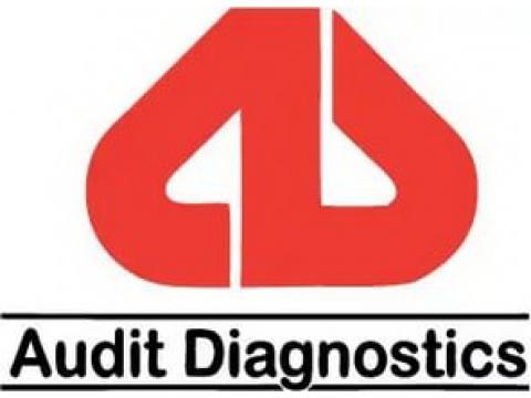 """Фирма """"Audit Diagnostics"""", Ирландия"""