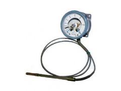 Термометры манометрические показывающие сигнализирующие ТМ 2030 Сr