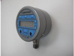 Манометры цифровые ДМ5002М, ДМ5002Вн
