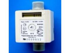 Счетчики газа бытовые СГ-1 вариант 12