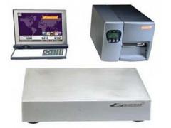 Весы неавтоматического действия с печатанием этикетки ES 2000, ES 3000