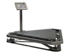 Весы специальные ВСПМ