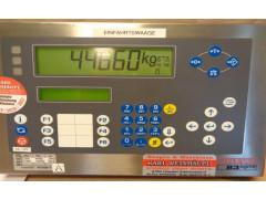 Весы электронные тензометрические автомобильные 83 Sigma