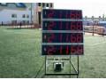 Системы электронного хронометража Стриж-М (Фото 2)