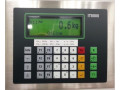 Весы платформенные ALBA-NT-IT (Фото 3)